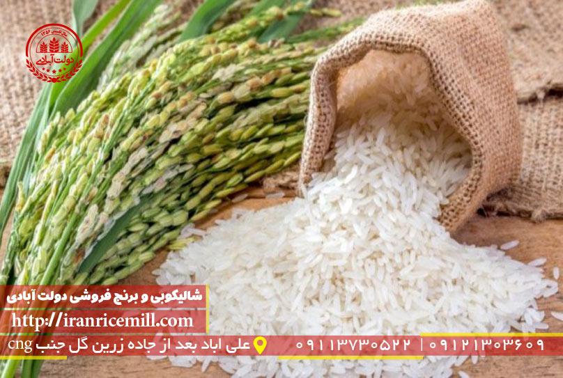 برنج خوب از کجا بخریم ؟
