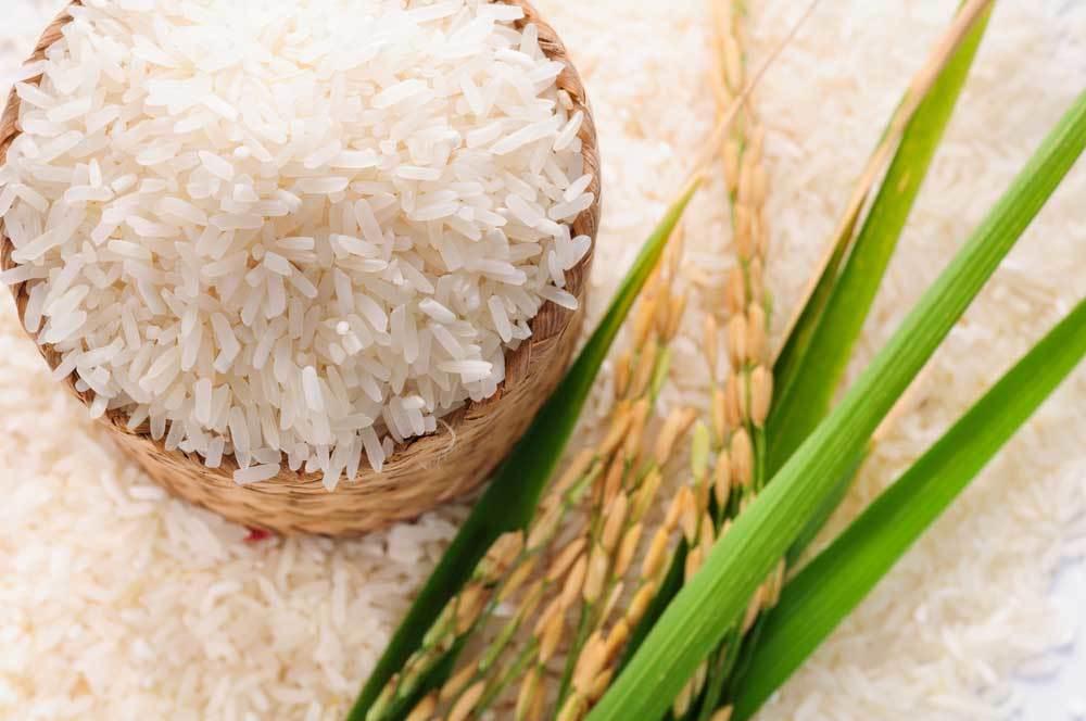 مقایسه انواع برنج ایرانی کدام بهتر است